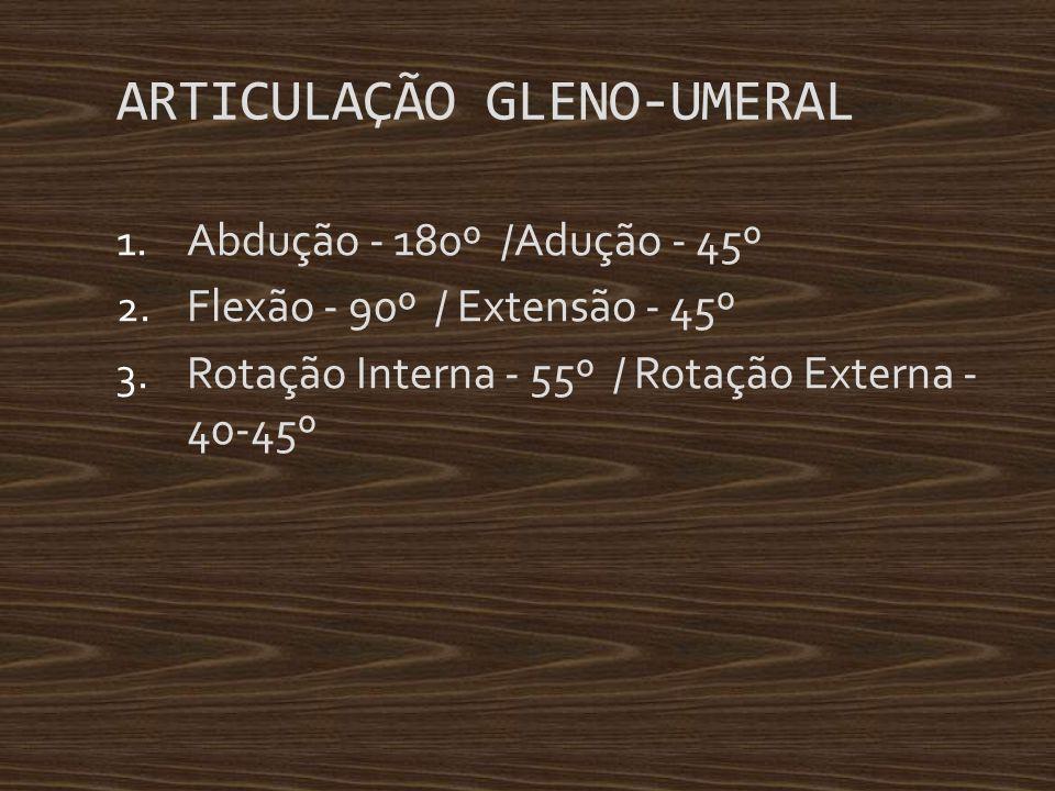 ARTICULAÇÃO GLENO-UMERAL