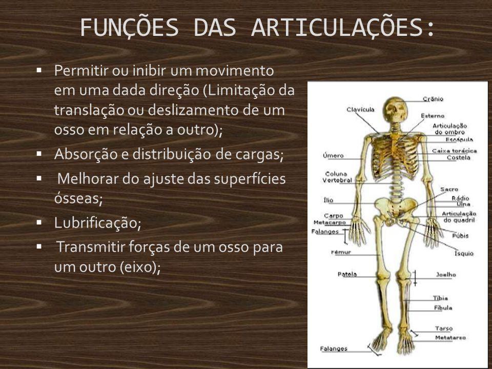 FUNÇÕES DAS ARTICULAÇÕES: