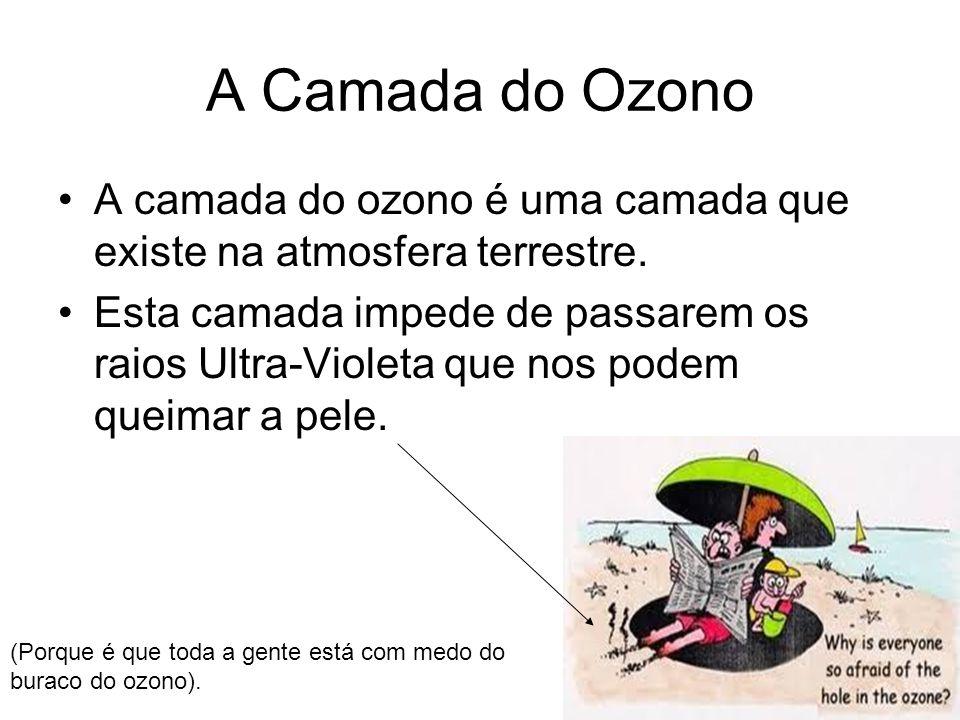A Camada do Ozono A camada do ozono é uma camada que existe na atmosfera terrestre.