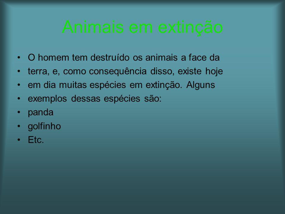 Animais em extinção O homem tem destruído os animais a face da