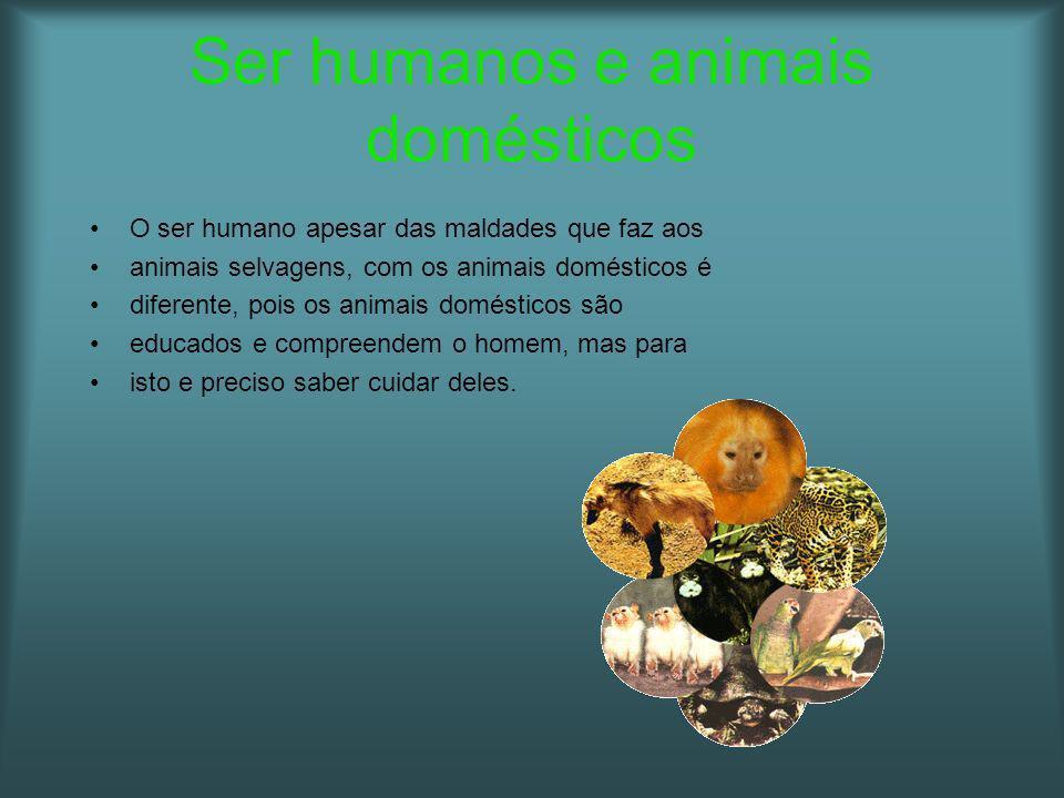 Ser humanos e animais domésticos