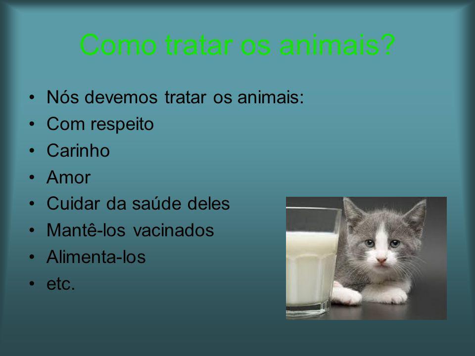 Como tratar os animais Nós devemos tratar os animais: Com respeito