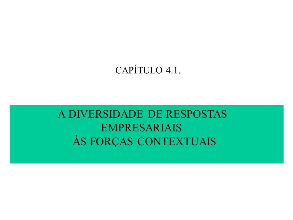 A DIVERSIDADE DE RESPOSTAS EMPRESARIAIS ÀS FORÇAS CONTEXTUAIS
