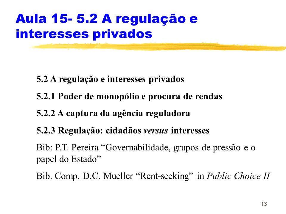 Aula 15- 5.2 A regulação e interesses privados
