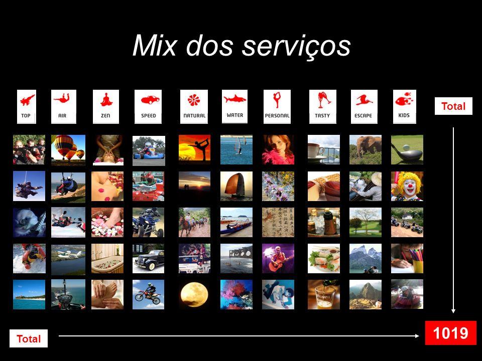 Mix dos serviços Total 1019 Total