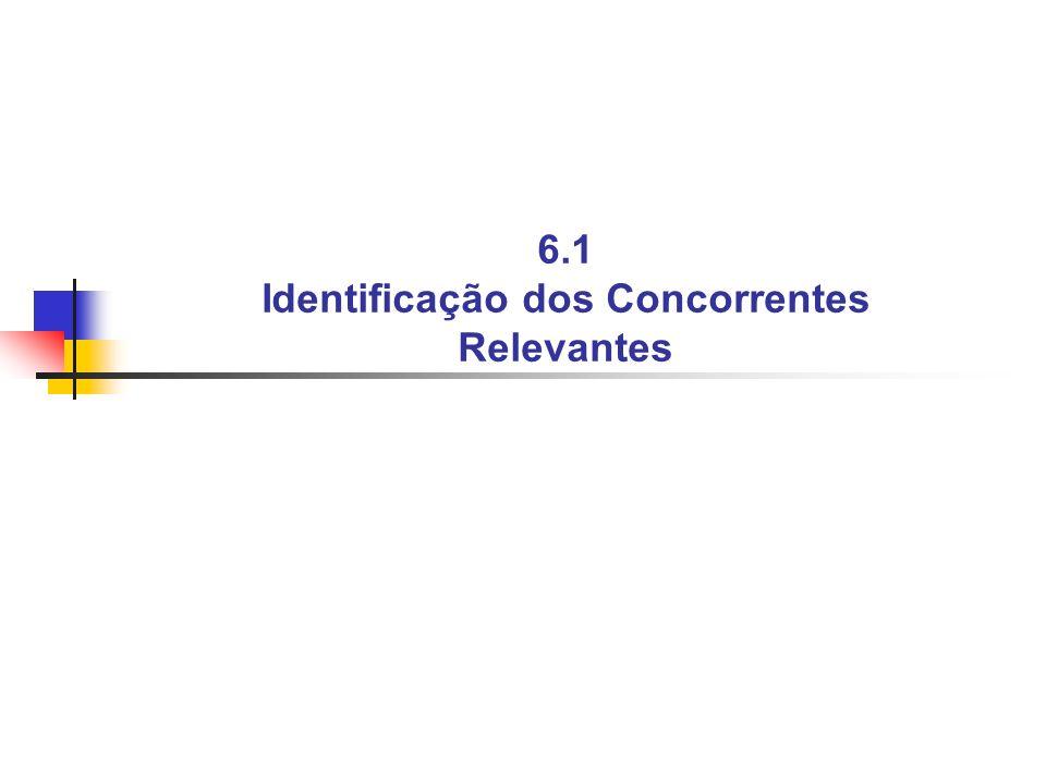 6.1 Identificação dos Concorrentes Relevantes
