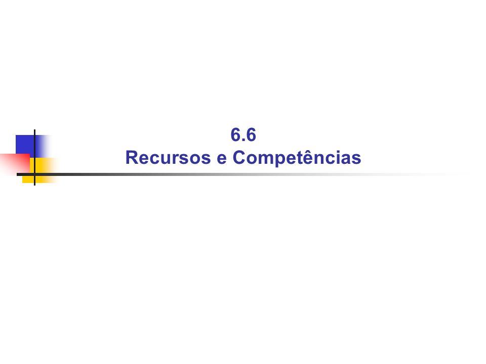 6.6 Recursos e Competências