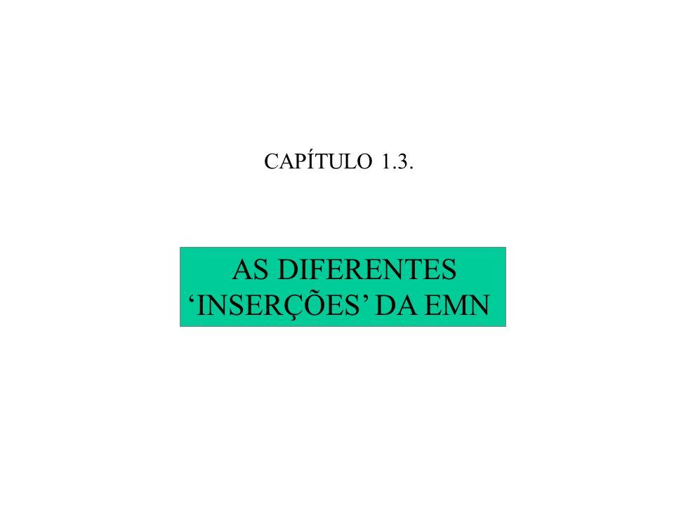 CAPÍTULO 1.3. AS DIFERENTES 'INSERÇÕES' DA EMN