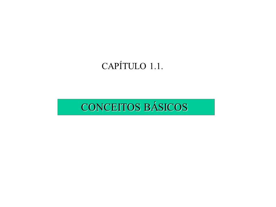 CAPÍTULO 1.1. CONCEITOS BÁSICOS