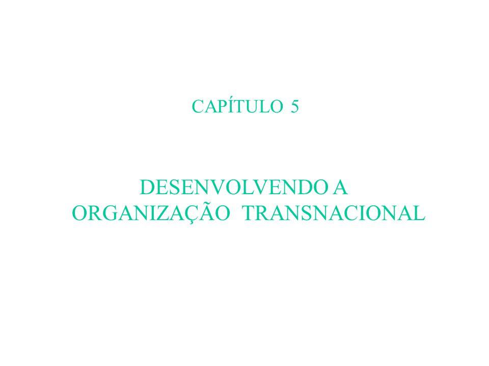 ORGANIZAÇÃO TRANSNACIONAL
