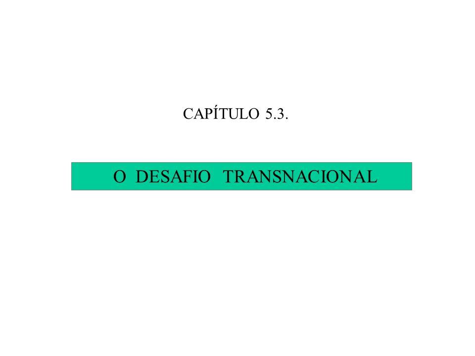 O DESAFIO TRANSNACIONAL