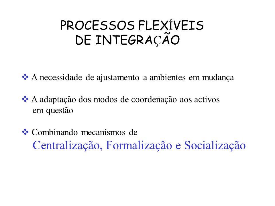 PROCESSOS FLEXÍVEIS DE INTEGRAÇÃO