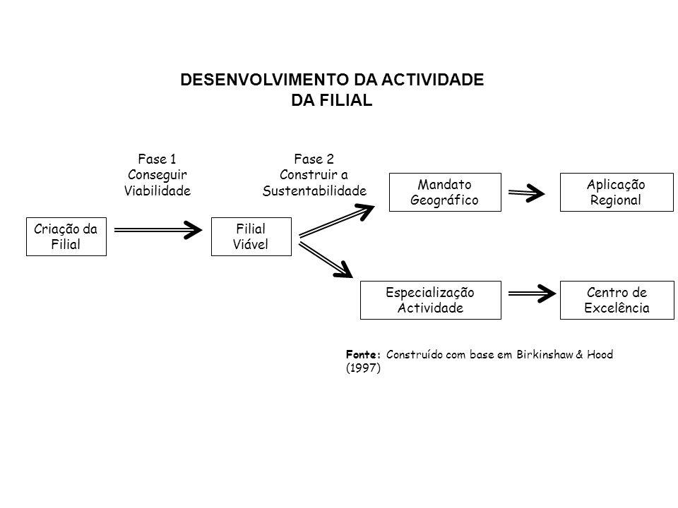 DESENVOLVIMENTO DA ACTIVIDADE DA FILIAL
