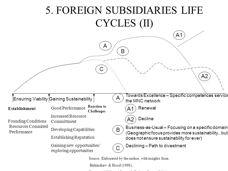5. FOREIGN SUBSIDIARIES LIFE CYCLES (II)