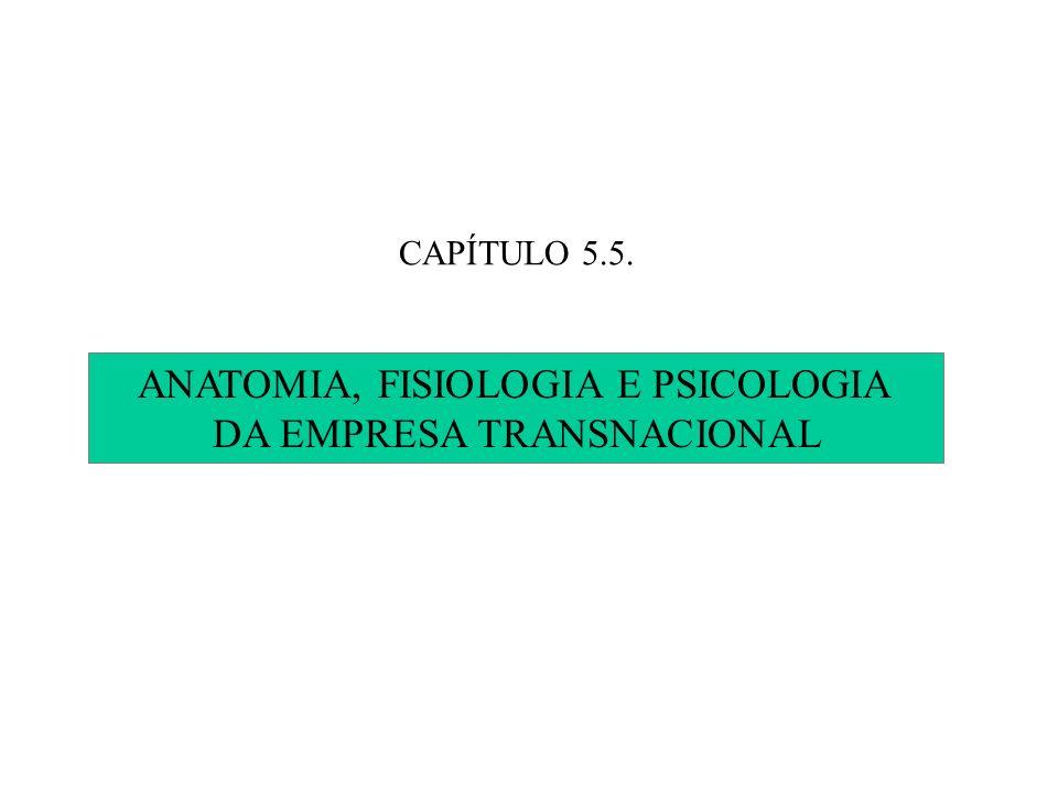 ANATOMIA, FISIOLOGIA E PSICOLOGIA DA EMPRESA TRANSNACIONAL