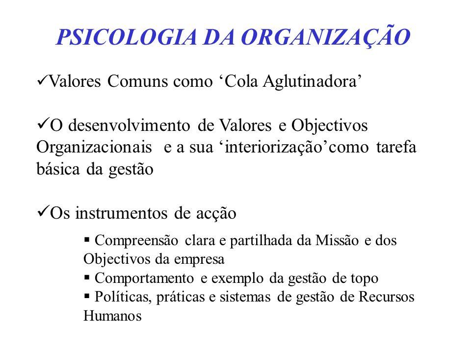 PSICOLOGIA DA ORGANIZAÇÃO