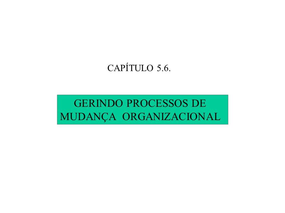 GERINDO PROCESSOS DE MUDANÇA ORGANIZACIONAL