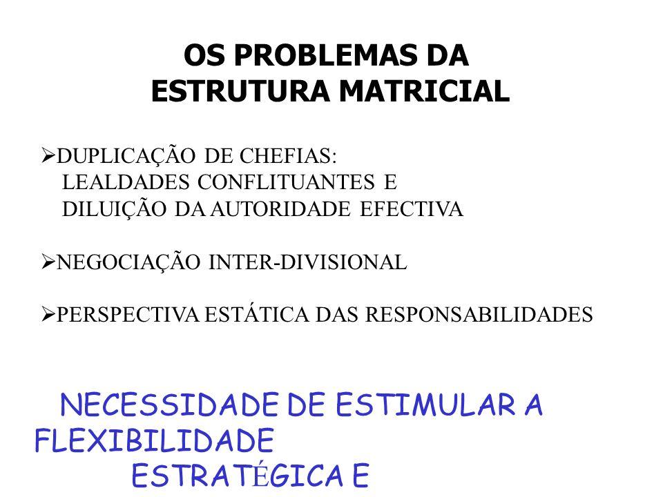 NECESSIDADE DE ESTIMULAR A FLEXIBILIDADE ESTRATÉGICA E ORGANIZACIONAL
