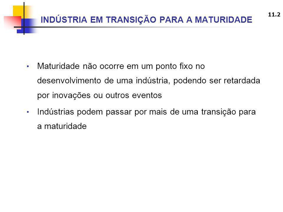 INDÚSTRIA EM TRANSIÇÃO PARA A MATURIDADE