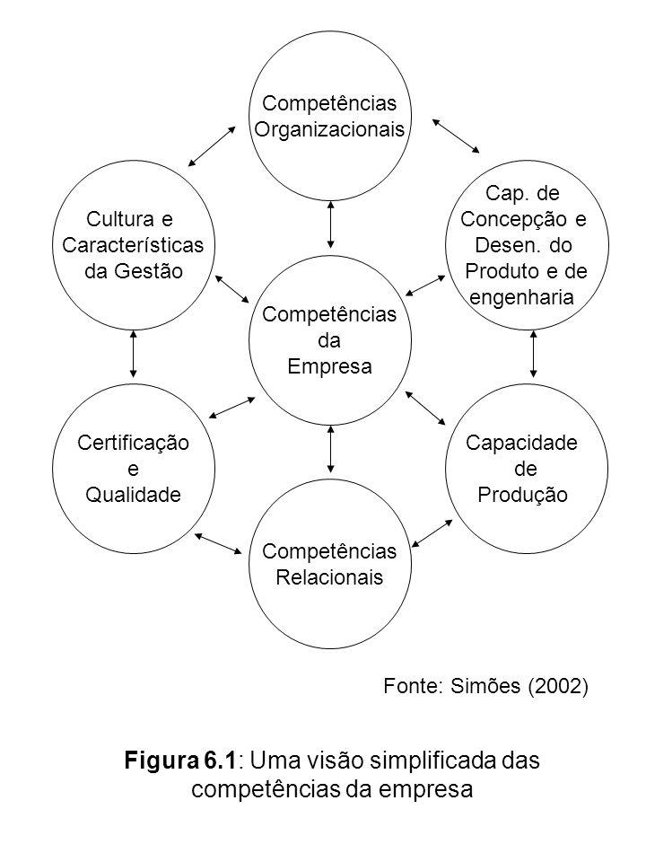 Figura 6.1: Uma visão simplificada das competências da empresa