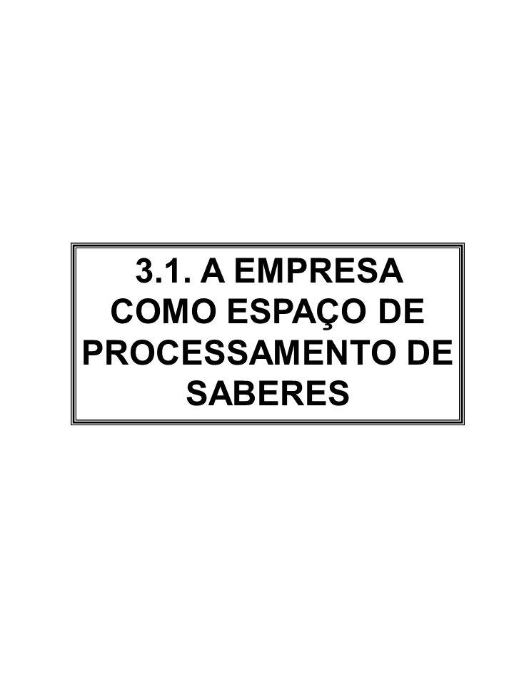 3.1. A EMPRESA COMO ESPAÇO DE PROCESSAMENTO DE SABERES