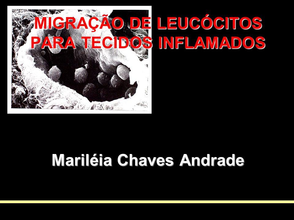 MIGRAÇÃO DE LEUCÓCITOS PARA TECIDOS INFLAMADOS Mariléia Chaves Andrade