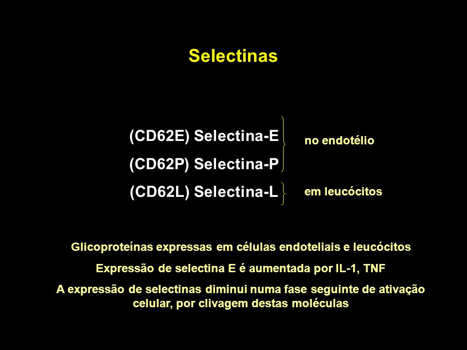 Selectinas (CD62E) Selectina-E (CD62P) Selectina-P (CD62L) Selectina-L
