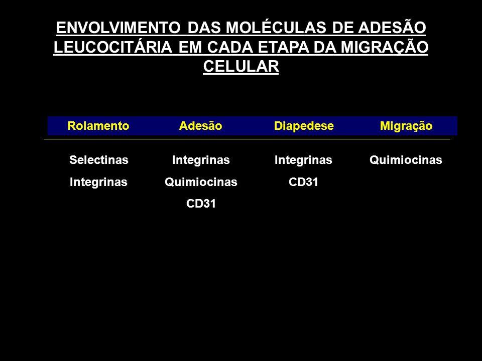 ENVOLVIMENTO DAS MOLÉCULAS DE ADESÃO LEUCOCITÁRIA EM CADA ETAPA DA MIGRAÇÃO CELULAR