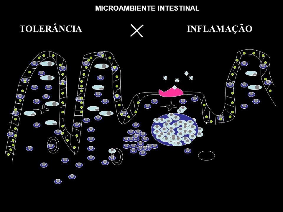 MICROAMBIENTE INTESTINAL
