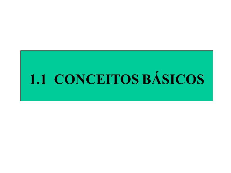 1.1 CONCEITOS BÁSICOS 1.1 CONCEITOS BÁSICOS