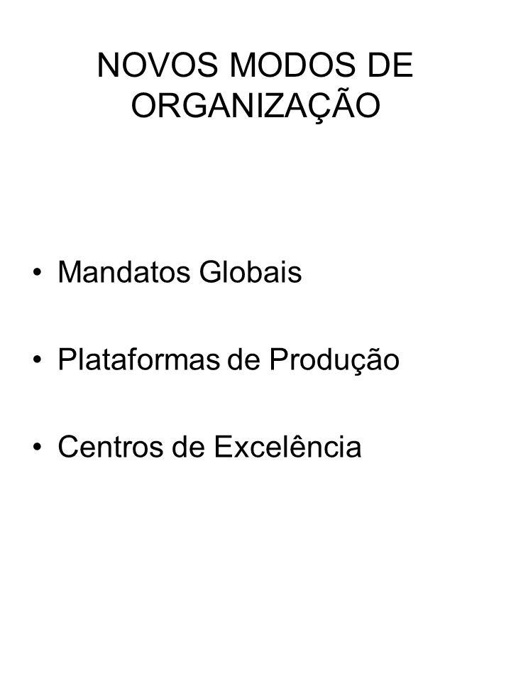 NOVOS MODOS DE ORGANIZAÇÃO