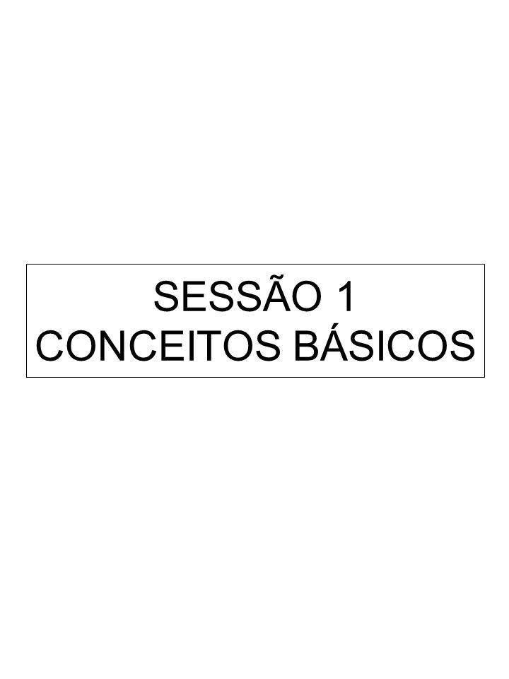 SESSÃO 1 CONCEITOS BÁSICOS
