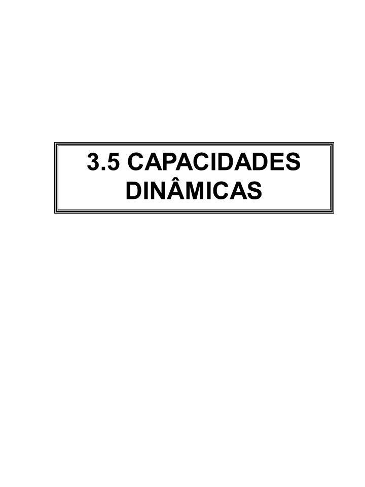 3.5 CAPACIDADES DINÂMICAS