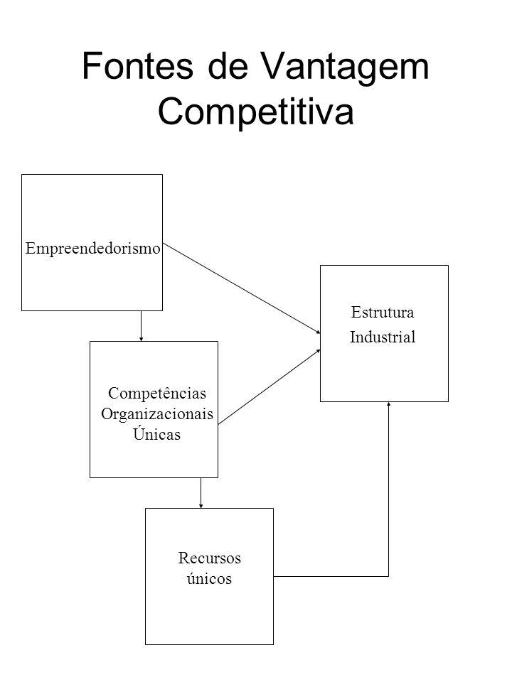 Fontes de Vantagem Competitiva