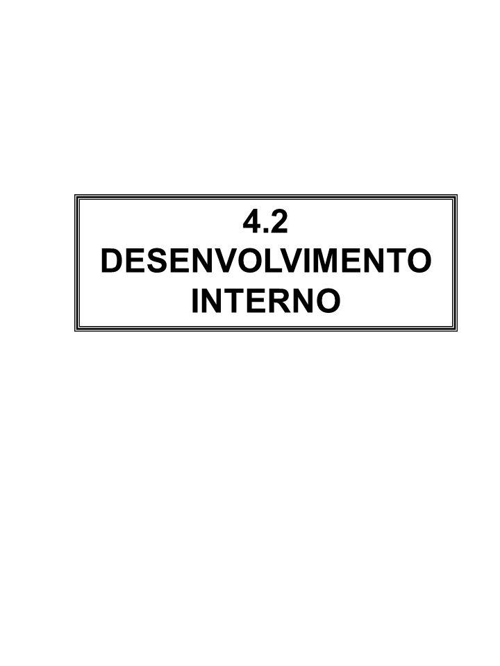 4.2 DESENVOLVIMENTO INTERNO