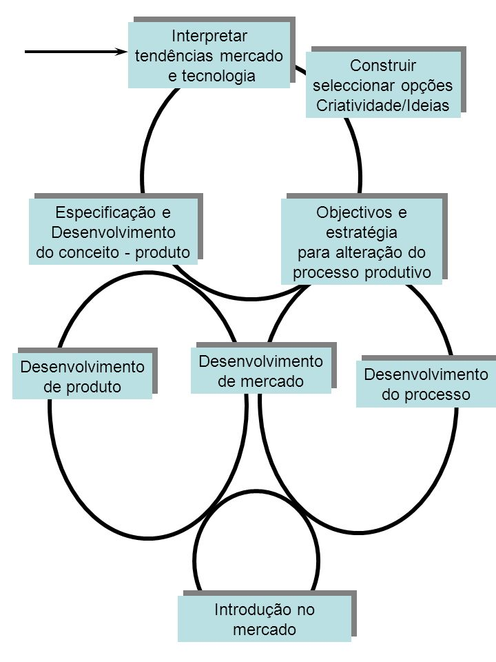 Objectivos e estratégia