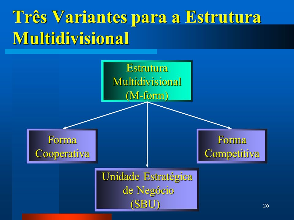 Três Variantes para a Estrutura Multidivisional