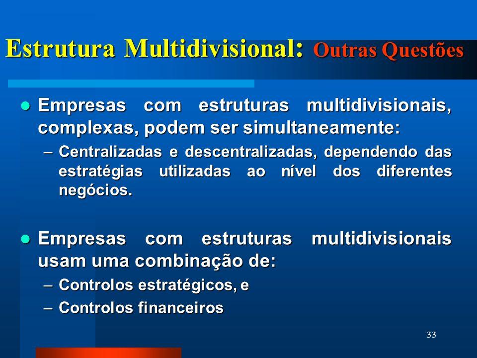 Estrutura Multidivisional: Outras Questões