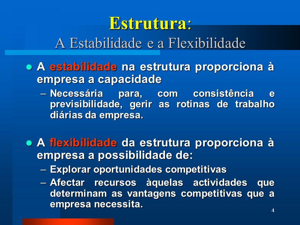 Estrutura: A Estabilidade e a Flexibilidade