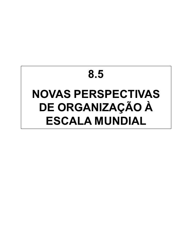 NOVAS PERSPECTIVAS DE ORGANIZAÇÃO À ESCALA MUNDIAL