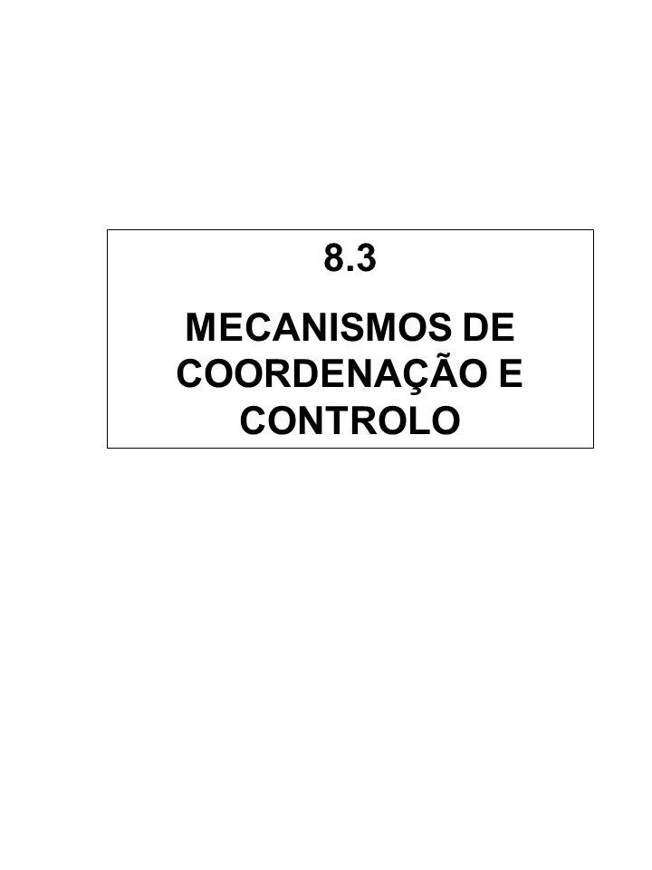 MECANISMOS DE COORDENAÇÃO E CONTROLO