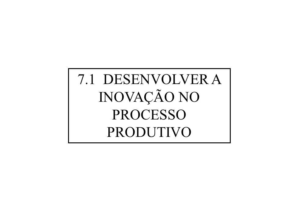 7.1 DESENVOLVER A INOVAÇÃO NO PROCESSO PRODUTIVO