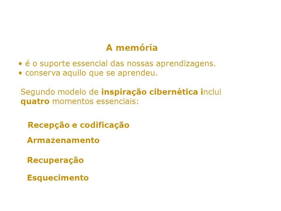 A memória • é o suporte essencial das nossas aprendizagens.