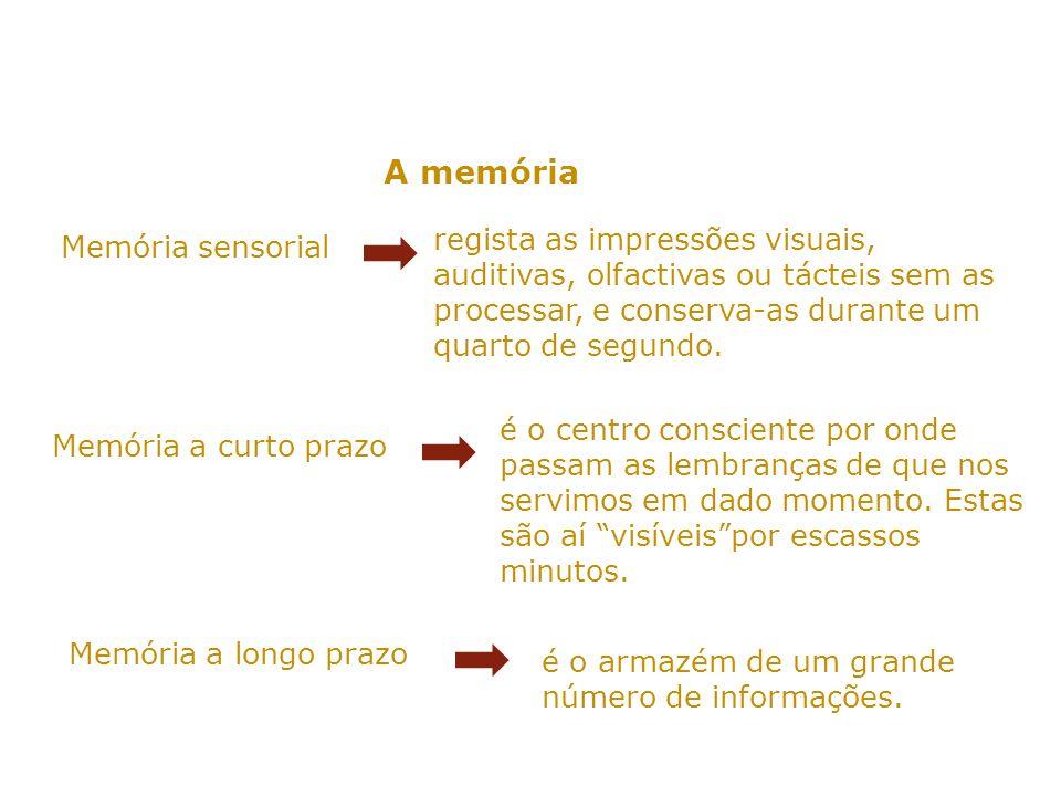 A memória regista as impressões visuais, auditivas, olfactivas ou tácteis sem as processar, e conserva-as durante um quarto de segundo.