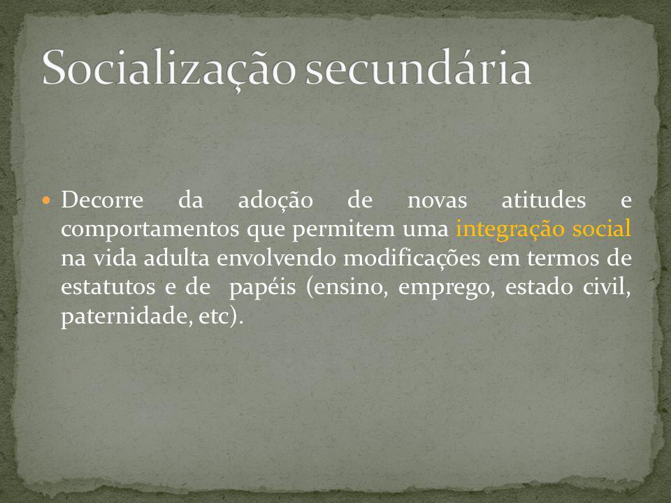 Socialização secundária