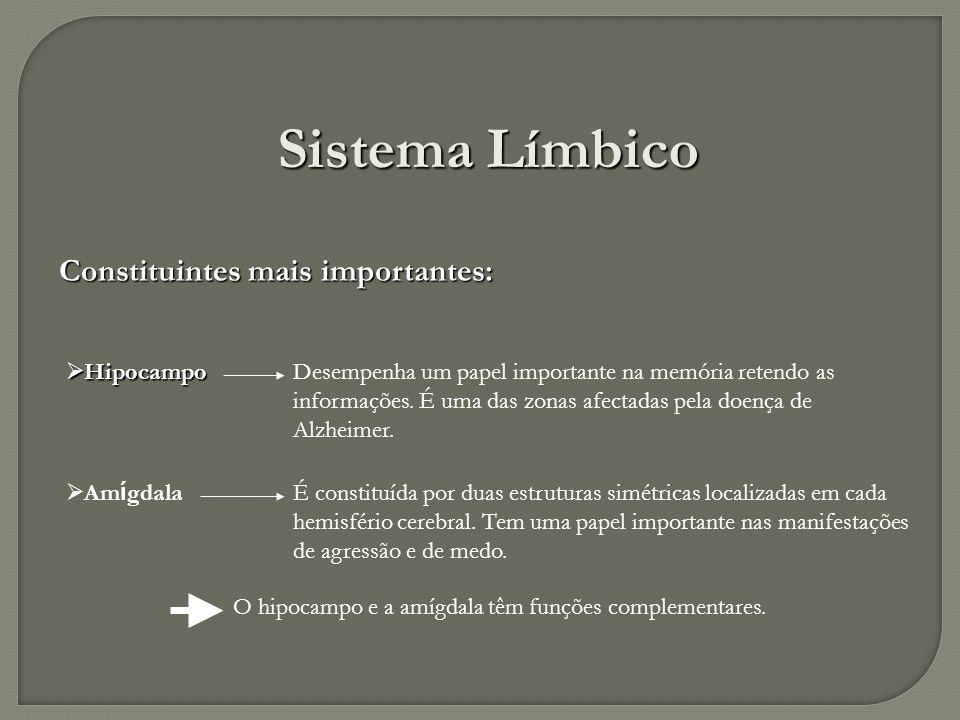 Sistema Límbico Constituintes mais importantes: Hipocampo