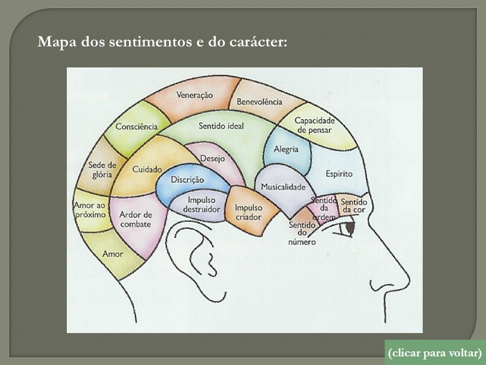 Mapa dos sentimentos e do carácter: