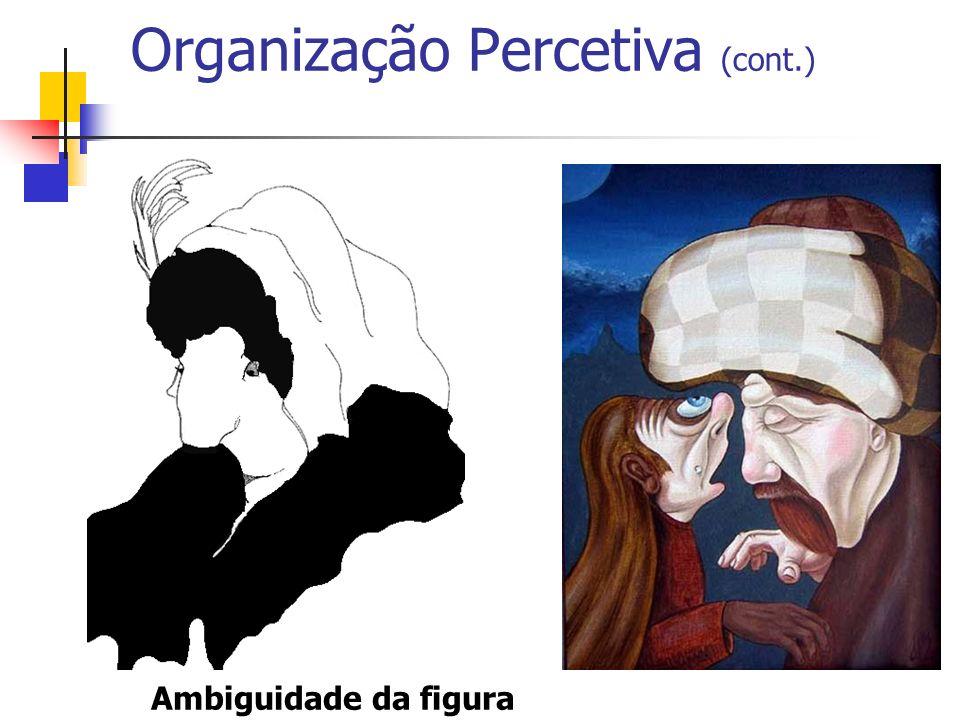 Organização Percetiva (cont.)