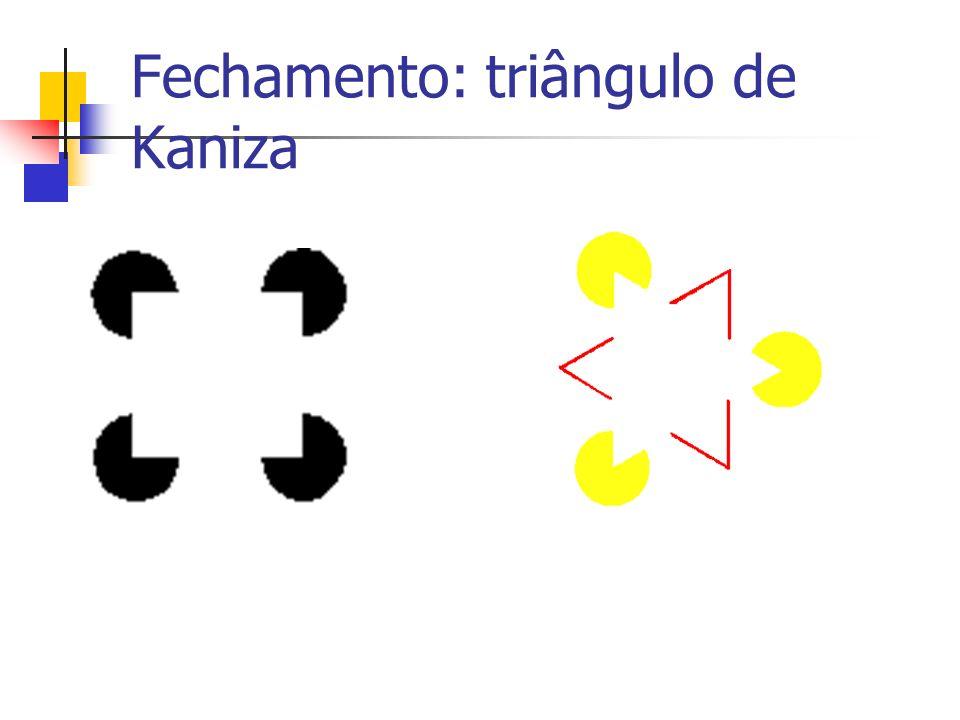 Fechamento: triângulo de Kaniza