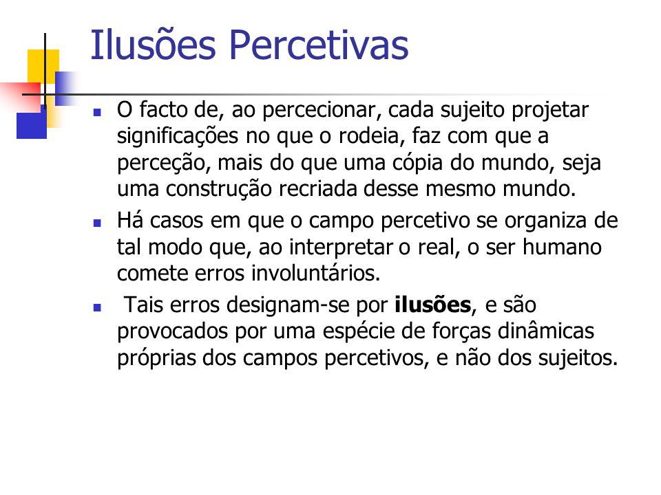 Ilusões Percetivas